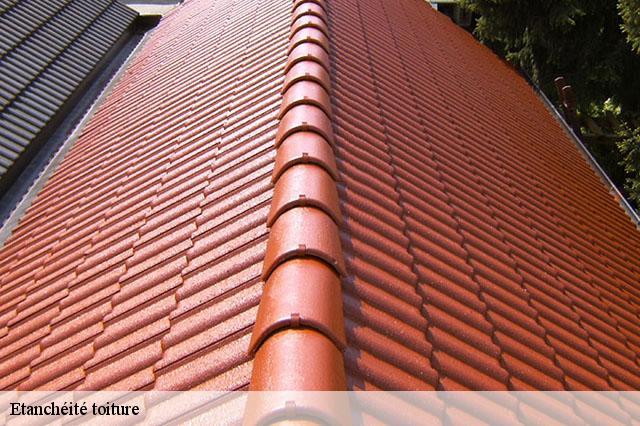 Etanchéité de toiture à Villiers Saint Frederic tél: 01.85 ...